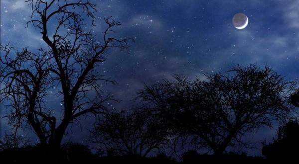 شب های آرامش بخش